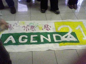Bandera de la Agenda 21 Local en San Carlos